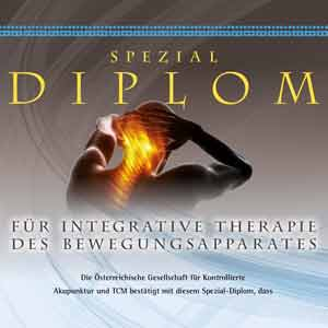 OGKA Diplom für Integrative Therapie des Bewegungsapparates