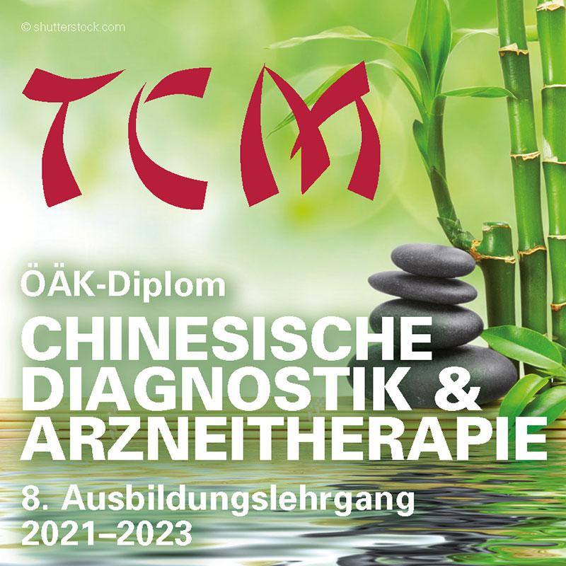 Chinesische Diagnostik & Arzneitherapie